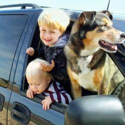 assurance auto à Ste-Foy